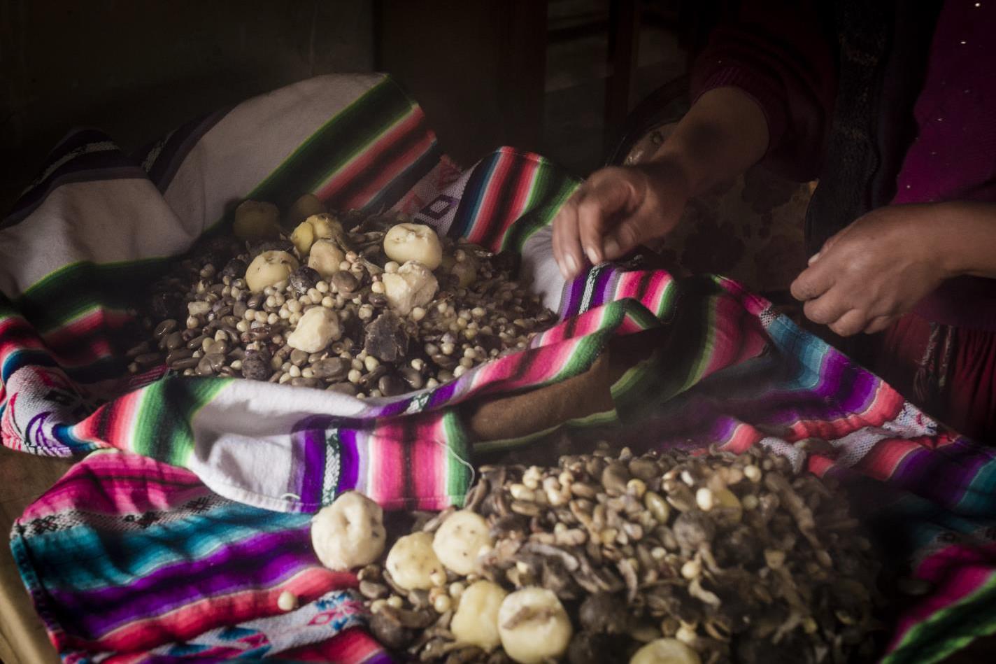 Alistando cocawi-Uriel Alexis Montúfar Butrón-Peru
