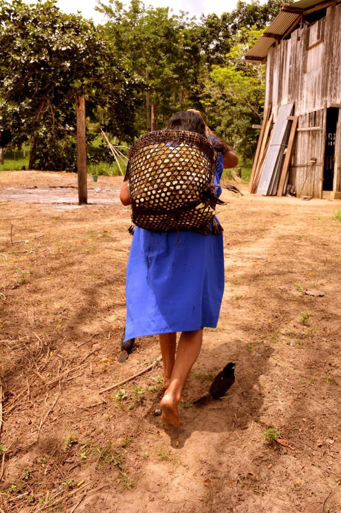 De nunkui a Luisa la tecnica tradicional de elaborar chicha de yuca2-Paola Alexandra Moreno Campoerde-Ecuador