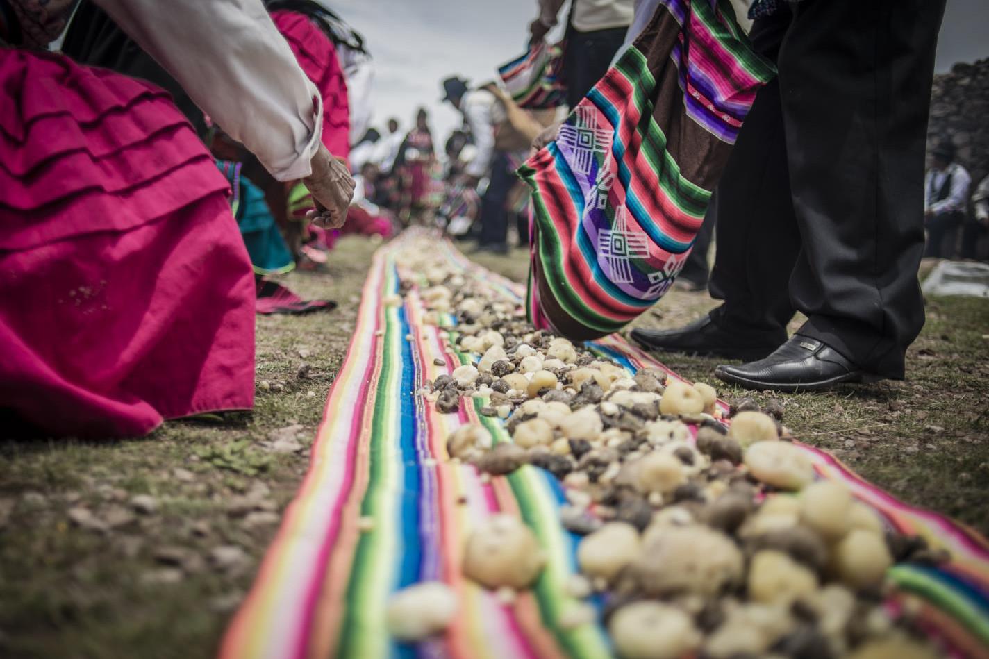 Sirviendo cocawi-Uriel Alexis Montúfar Butrón-Peru