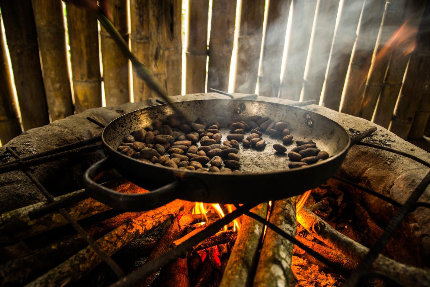 Tostado de granos de cacao-Juliana Carolina Bertone-Argentina