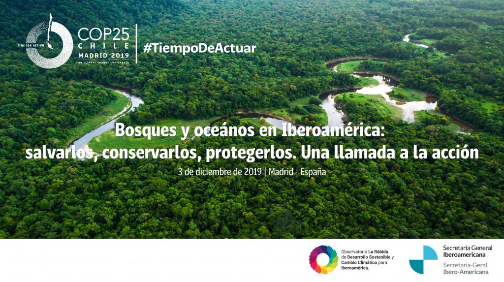 Trasera_COP25_3DIC